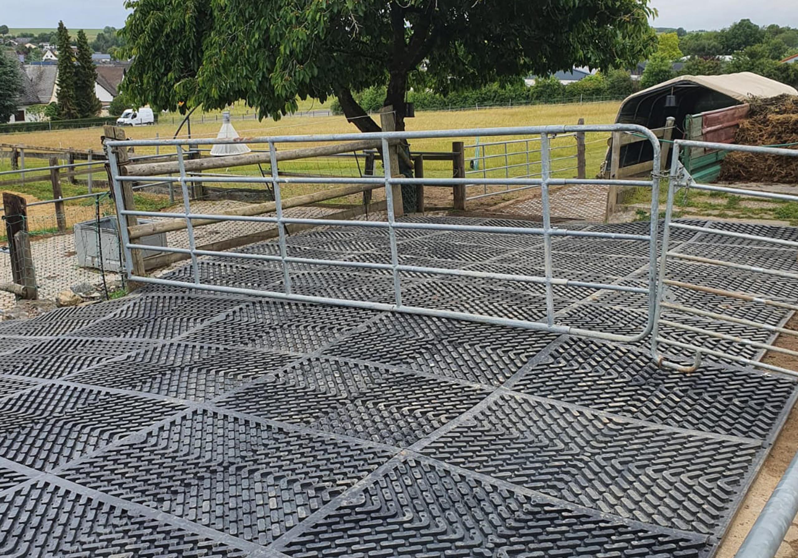 Gelochte Boxenmatten als Auslauf für Pferde_0000_12