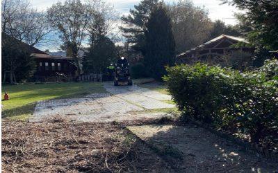 ImGex-EASY bei Baumpflegearbeiten
